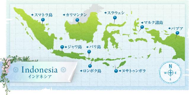 インドネシア観光案内 インドネシアコーナー